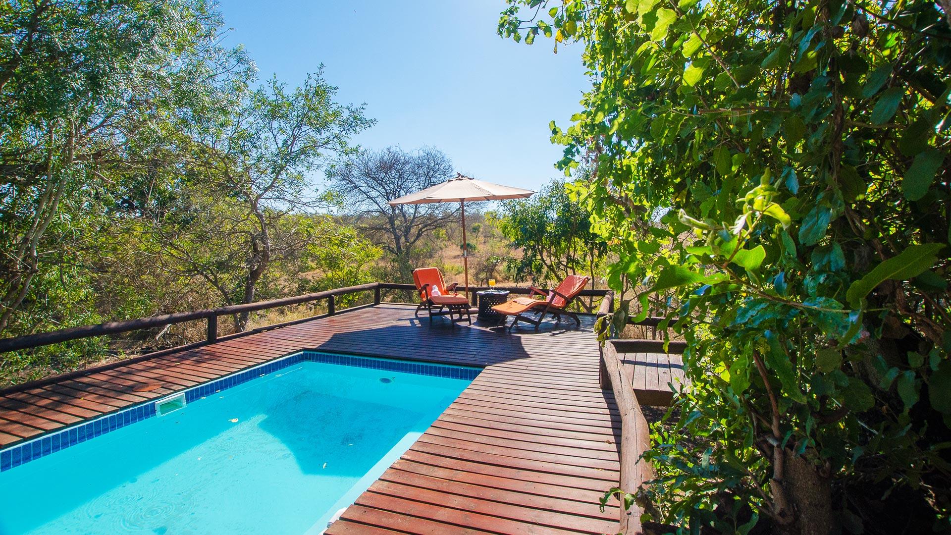 Camp Shonga Kruger