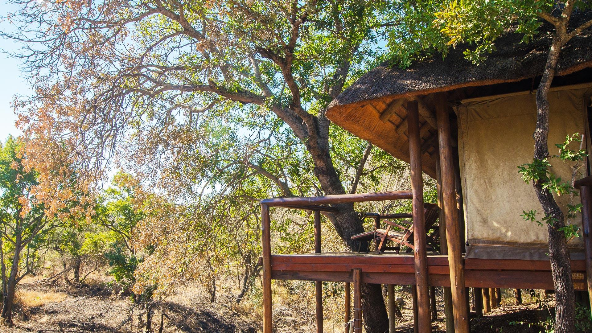 Camp Shonga