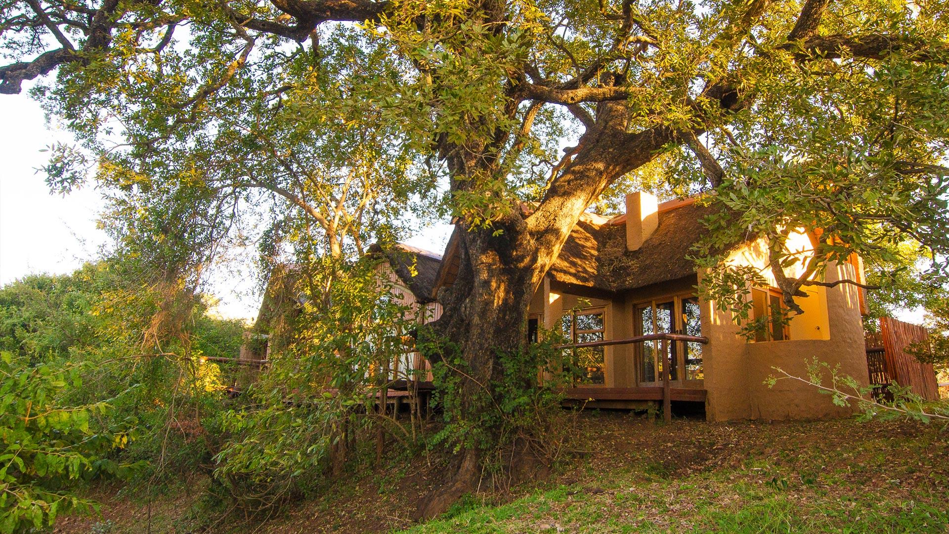 Shishangeni Lodge Kruger Park